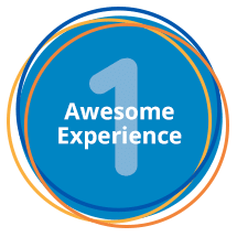1 awesome experience button